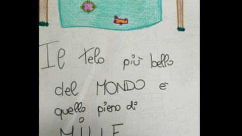 IL TELO PIU' BELLO AL MONDO E' QUELLO CON I RATTOPPI.
