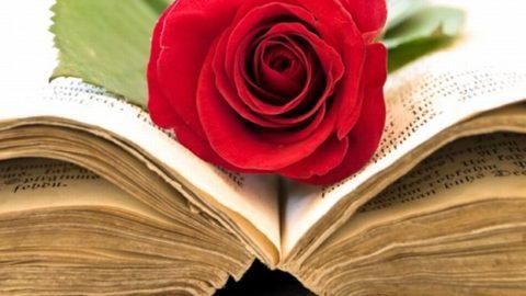 Milioni di libri a disposizione: se doveste sceglierne solo uno, quale salvereste?