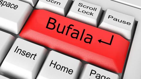 Come riconoscere la verità: bufale sul web