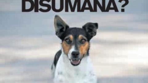 Siate umani, amate il vostro cane