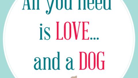 Restiamo fedeli ai nostri cani!