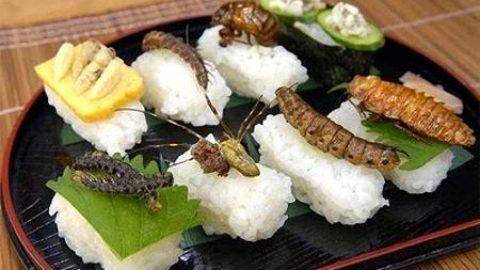 Alla riscoperta delle tradizioni alimentari.