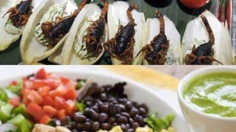 Cavallette e larve nel piatto e buon appetito!