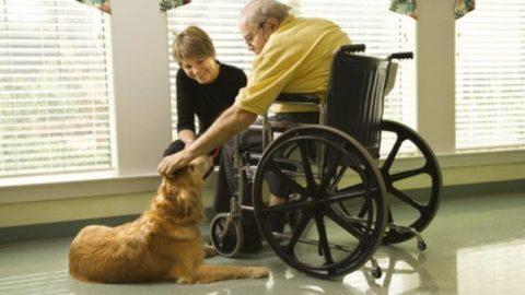 Anziani: esseri umani al 100 %!