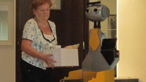 BADANTI ROBOT