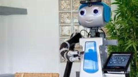 ROBOT?!