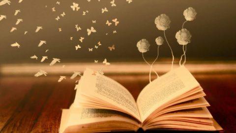 La magia di un libro.