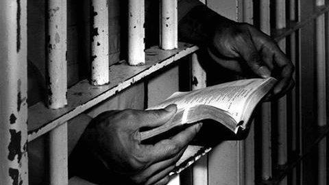 Leggere è libertà
