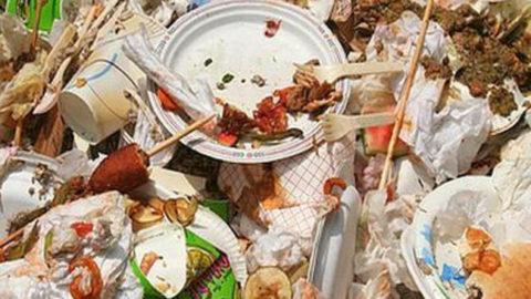 Love food, hate waste.