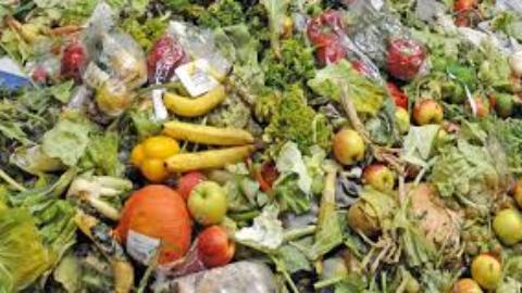 Educazione alimentare: quando comprenderemo il valore di ciò che mangiamo?