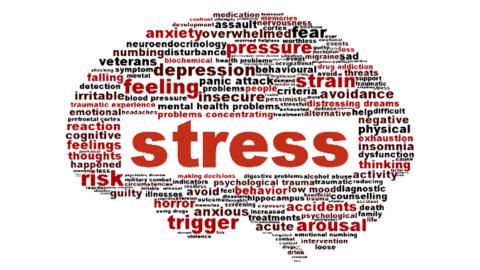 La scuola: è ormai diventata uno stress?