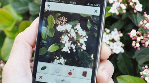 Natura e gli smartphone