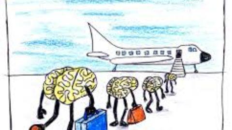 La fuga dei cervelli: come arginare questo fenomeno?
