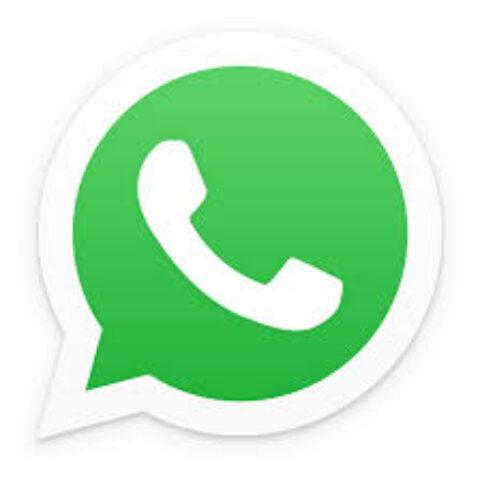 Whatsapp: ce la siamo cercata!